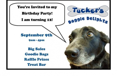 Tucker's 12th Birthday Party