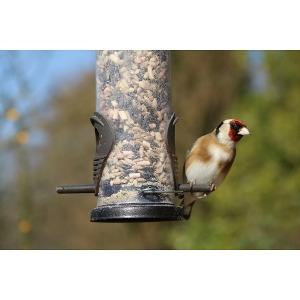 20% Off Bird Feeders