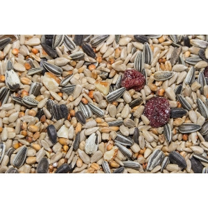 $5 Off 30lb Bag or Larger of Bird Seed