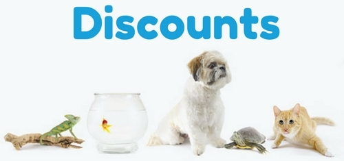 Discounts & Special Offers