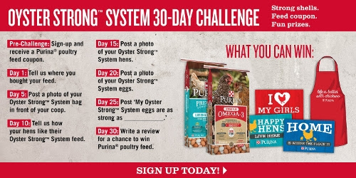 Oyster Strong Challenge