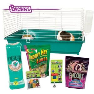 Complete Guinea Pig Starter Kit
