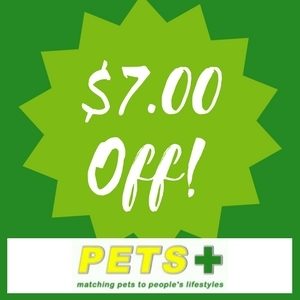 $7 Off $35 Purchase!
