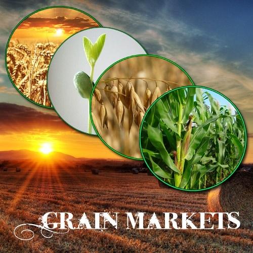 Grain Futures