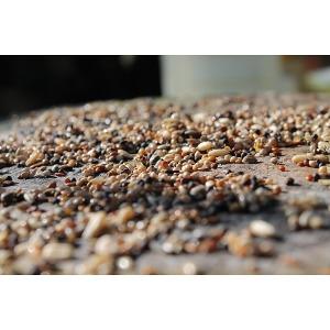 Bird Seed 50lb