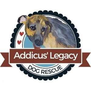 Adoption Event With Addicus' Legacy Dog Rescue