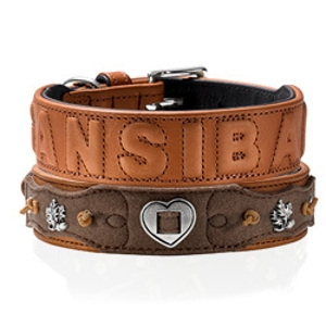 Hunter Saddle Leather Dog Collar and Leashes
