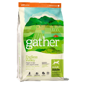 Gather Endless Valley Vegan Recipe for Adult Dogs