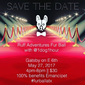 Ruff Adventures Fur Ball with 1dog1hour At The Gatsby