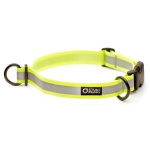 Stunt Puppy Glo Dry Collar