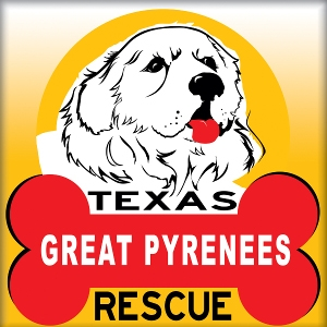 Texas Great Pyrenees Rescue Meet and Greet