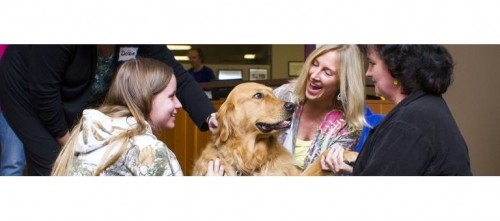 Therapy Dog Training 9/6