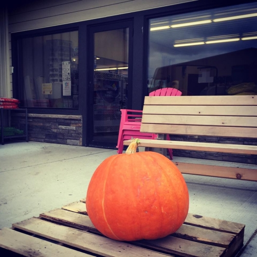 Guess the Pumpkin Weight Giveaway Contest