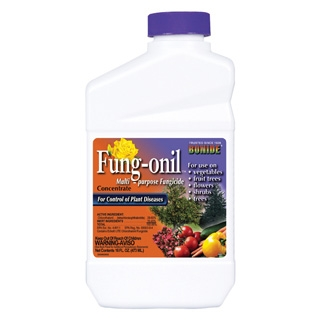 Bonide Fung-onil Multi-Purpose Fungicide Concentrate, 1 Pint
