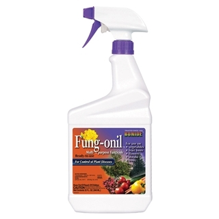 Bonide Fung-onil Multi-Purpose Fungicide Spray, 32 oz.