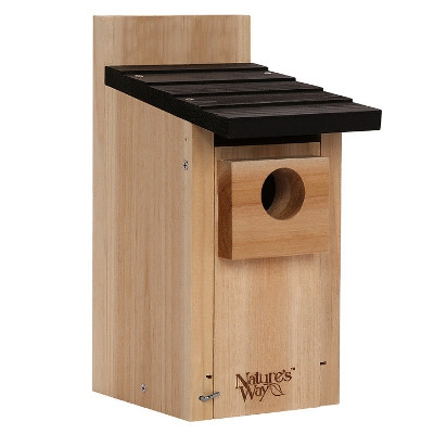 Cedar Bluebird House with Viewing Window