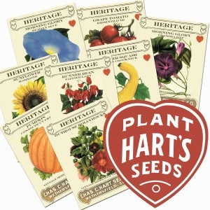 All Hart's Flower, Vegetable & Herb Seeds