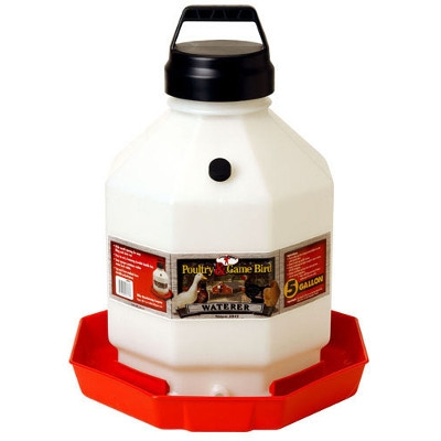 5 Gallon Poly Poultry Waterer