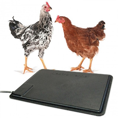 K&H Thermo Heated Pad for Chickens