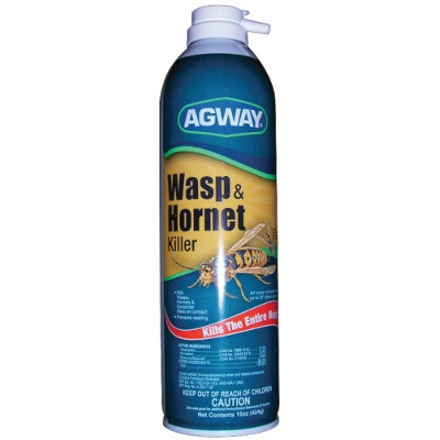 Agway Wasp & Hornet Killer Spray