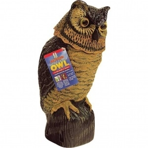 Garden Defense Owl with Bobbing Head