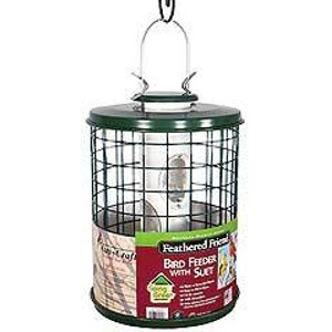 Feathered Friend Caged EZ-Clean Tube Feeder