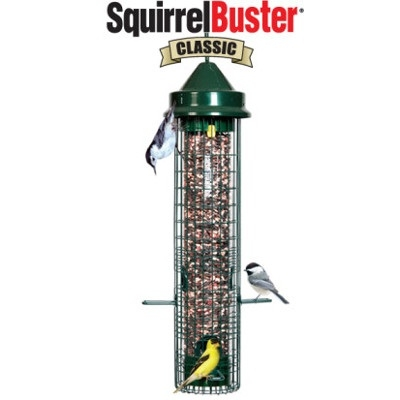 SquirrelBuster Classic Bird