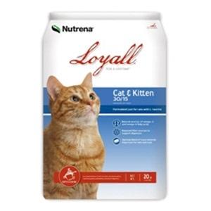 Loyall Cat & Kitten Formula 30/15