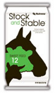 Stock and Stable Horse