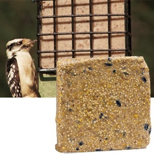 Suet Plus Wild Bird Blend 5pk w/ Suet holder