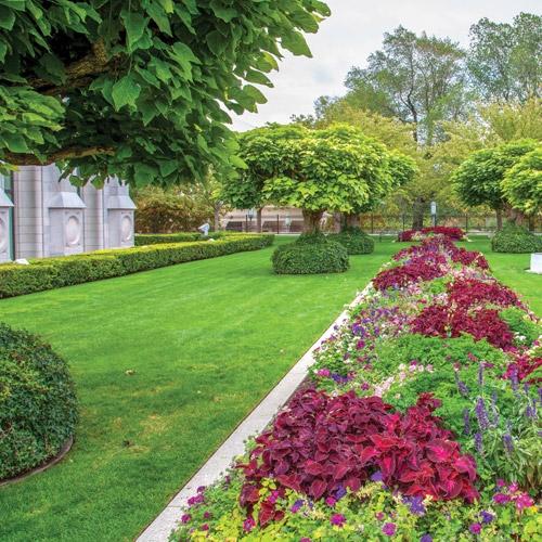Lawn, Garden & Pond