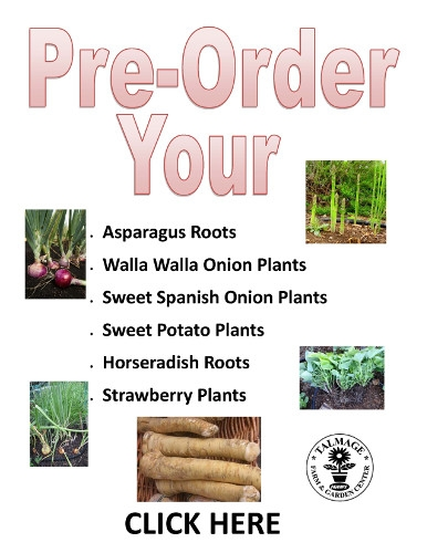 Vegetable Pre-Order Form
