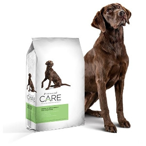 Diamond Care Sensitive Skin Dry Dog Food, 8 lbs.