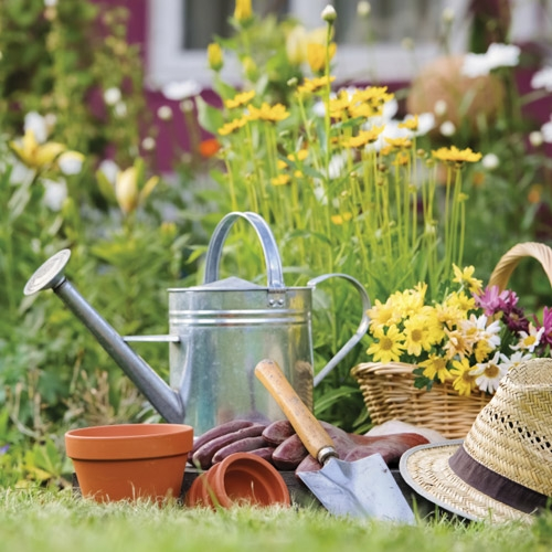 Lawn & Garden Department