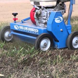 Bluebird® Lawn Comber/Dethatcher