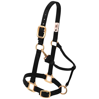 Weaver Leather Halters and Leads