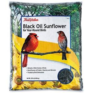 True Value Black Oil Sunflower Bird Seed, 20-Lb.
