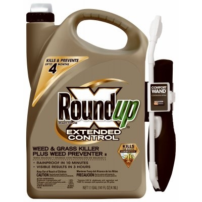 Roundup Extended Control Weed & Grass Killer, 1 Gallon