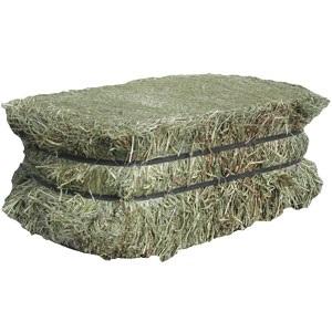 Feed Hay