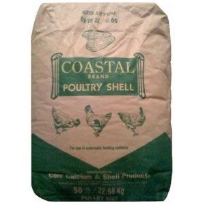 Coastal Oyster Shells