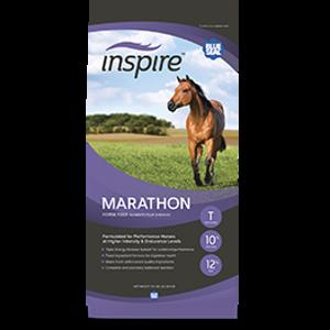 Blue Seal Inspire Marathon