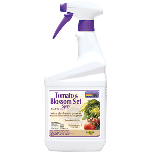 Tomato and Blossom Set Spray