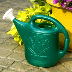 Classic Plastic Watering Can