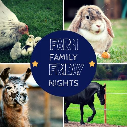 Farm Family Friday Night: Llamas!