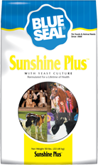 Blue Seal Sunshine Plus Feed
