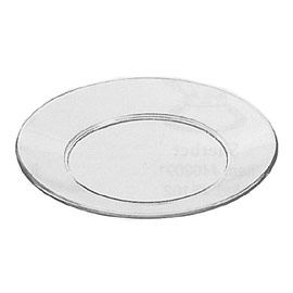 8 Inch Glass Plate