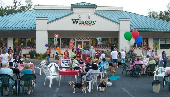 Wiscoy