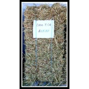 Canadian Timothy / Alfalfa Bales