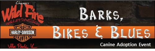Barks, Bikes and Blues