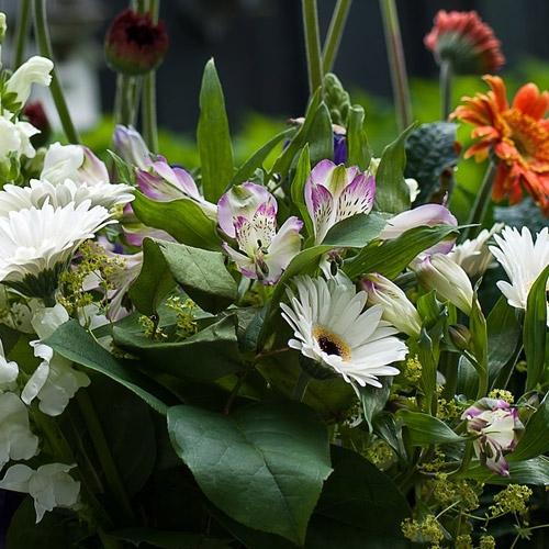 Barrett's On-line Flower Shop
